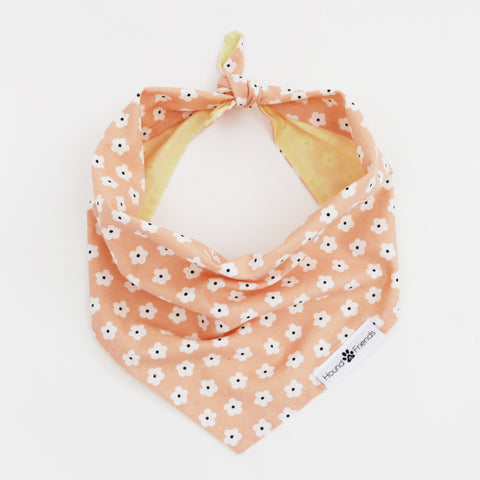 Snap Reversible peach florals Dog Bandana matching with owners at Hound and Friends