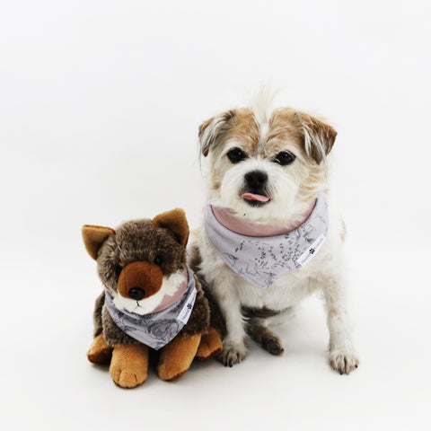 Image of Teaka Pink and Purple Floral Reversible Dog Bandana matching with owner | Hound and Friends