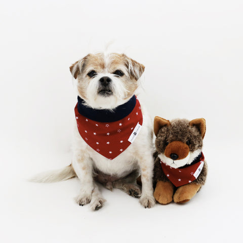 Tony Reversible fourth of July Dog Bandana matching with owners at Hound and Friends