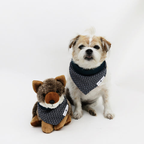 Image of Wren Reversible Bandana
