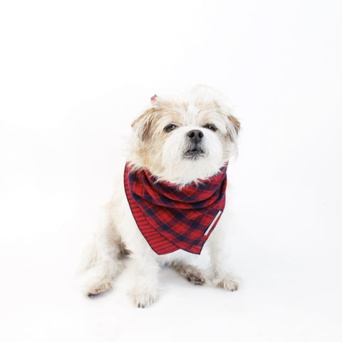 Image of York Reversible Scarf Bandana