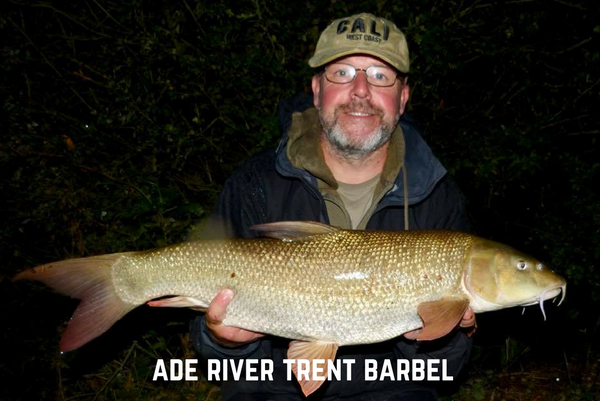 Middle Trent Barbel Update