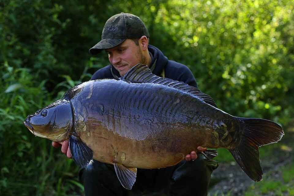 A Stunner for Craig on the Mystic Plum