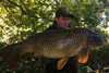 Craig Runham Common Carp