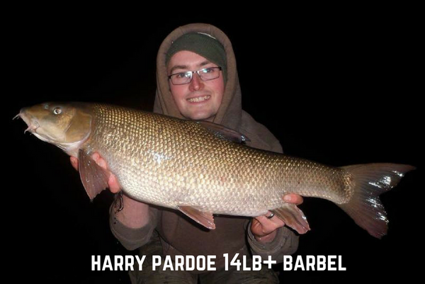 Double Trouble for Harry Pardoe