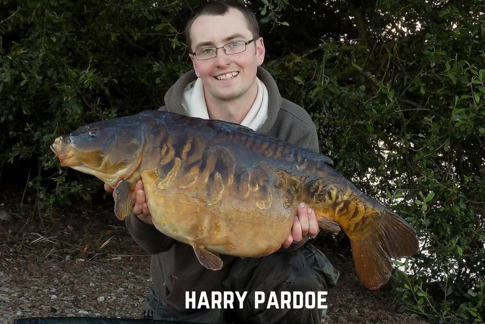 Harry Pardoe Carp