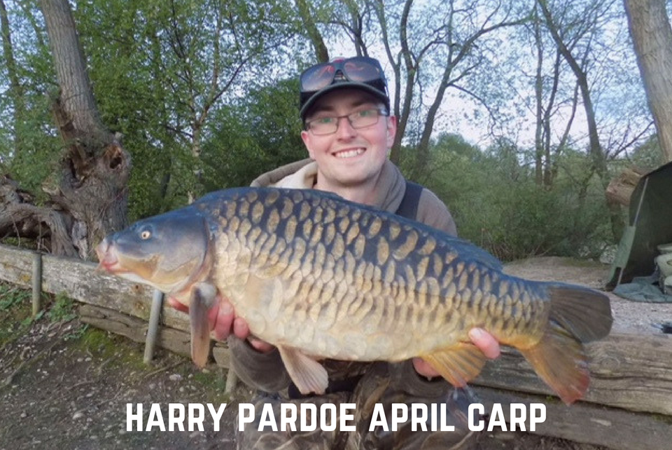 April Update - Harry Pardoe