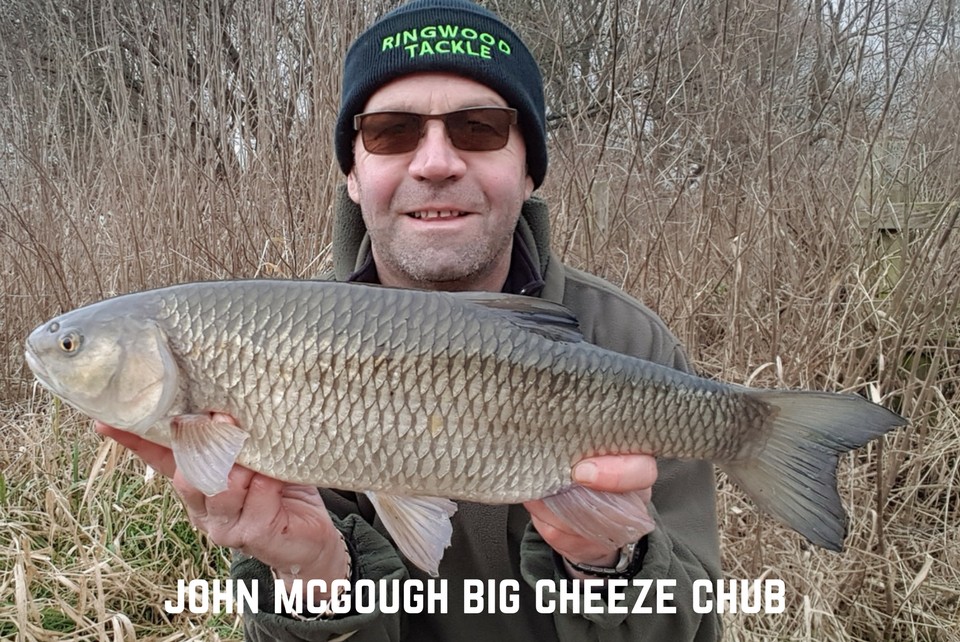 John McGough Cheese Paste caught Winter Chub