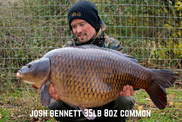 Mega Winter Common