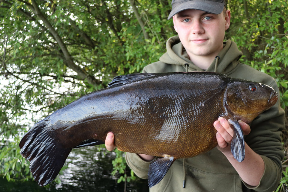 Double figure Tench for Kane