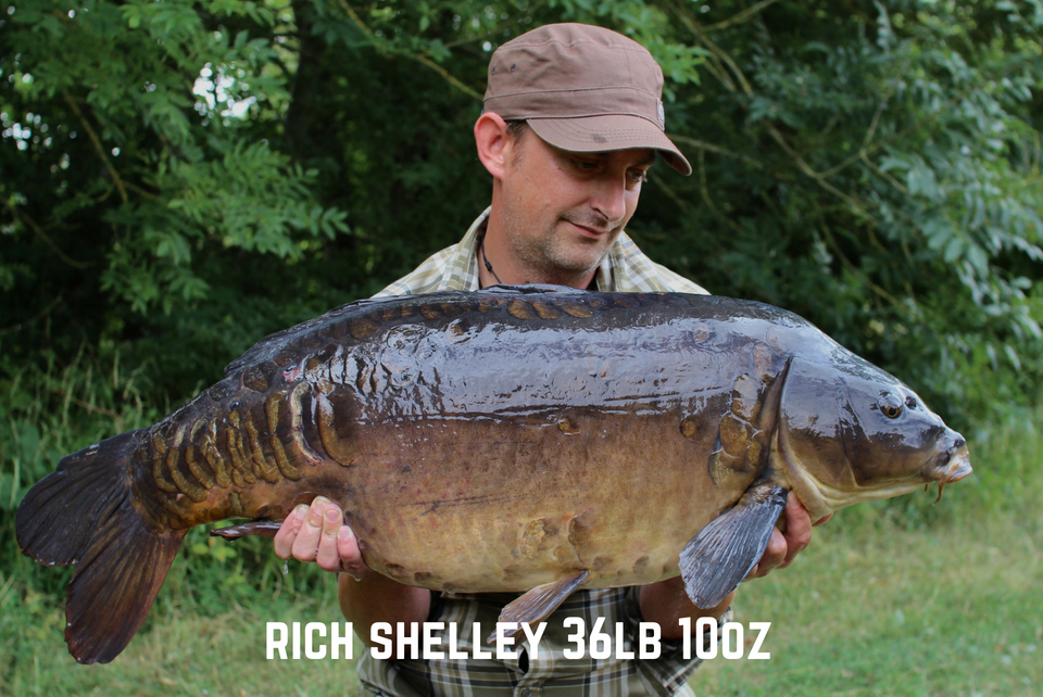 Richard Shelley 36lb 10oz
