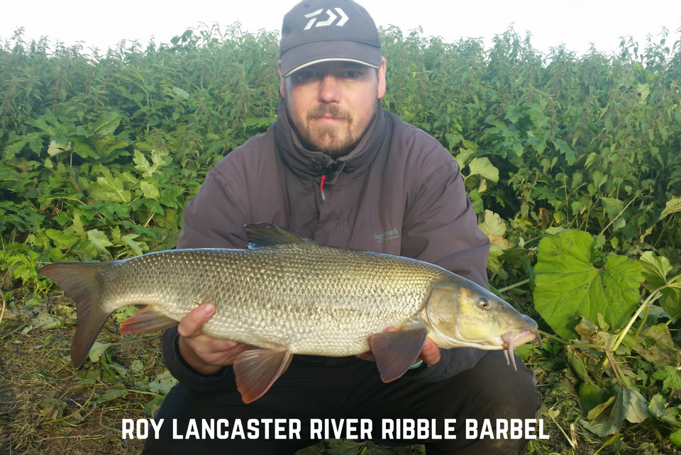 Barbel Fishing with the Elips Pellets