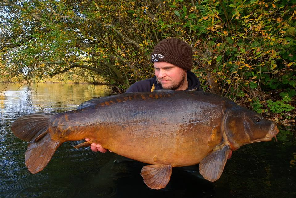 Autumn carp for Craig