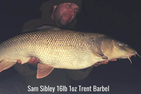 Sam Sibley Winter River Trent Barbel