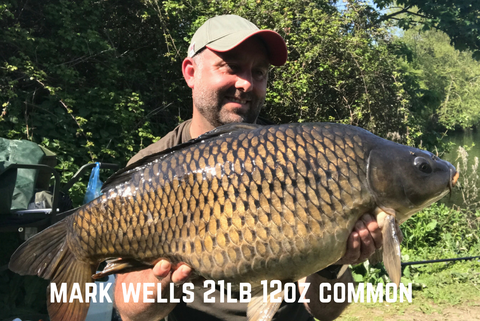 Mark Wells Common Carp