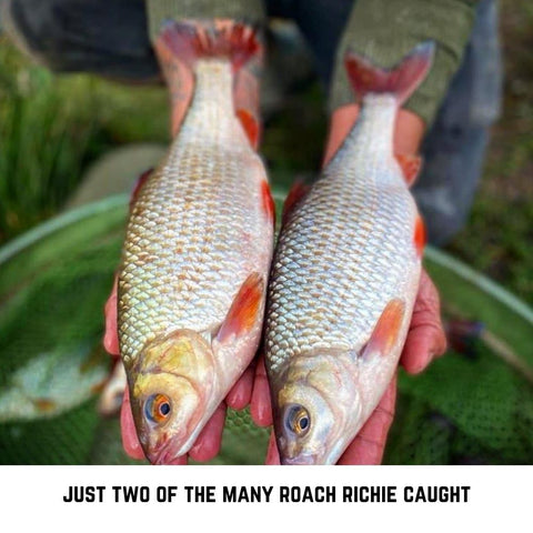 Two stunning Roach from Richie's fishing trip