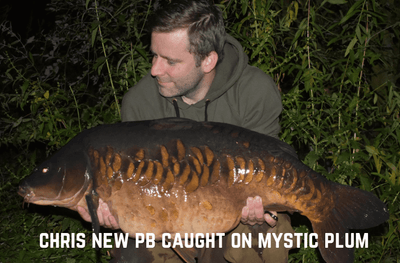 Chris Mystic Plum Boilies