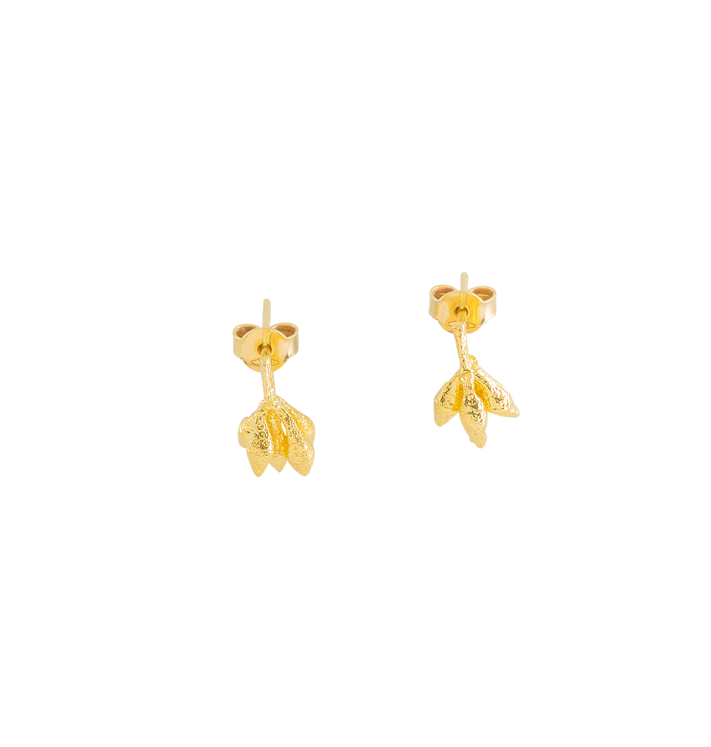 Manna Gumnut Earrings - 3