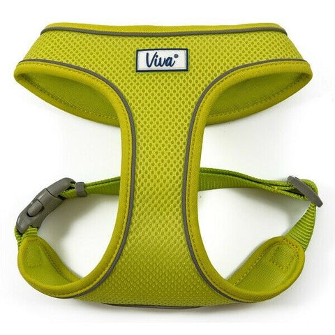Viva Comfort Harness Lime