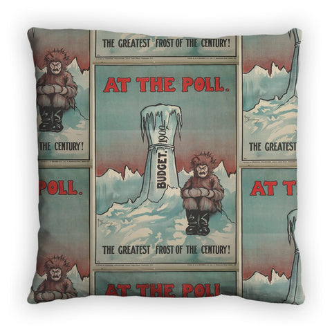 At the Poll Feather Cushion