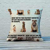 Now we're the fastest growth of any major economy in Europe Feather Cushion (Lifestyle)
