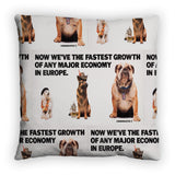 Now we're the fastest growth of any major economy in Europe Feather Cushion