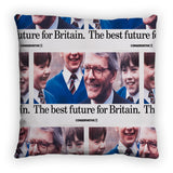 The best future for Britain Feather Cushion