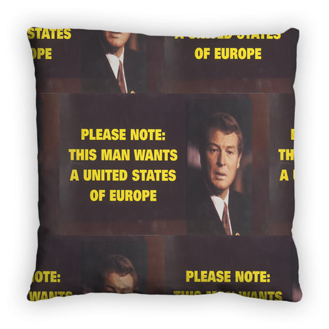 Please note: this man wants a United States of Europe Feather Cushion