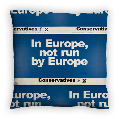 In Europe, not run by Europe Feather Cushion