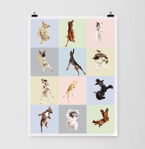 Flying Dogs Poster 3x4