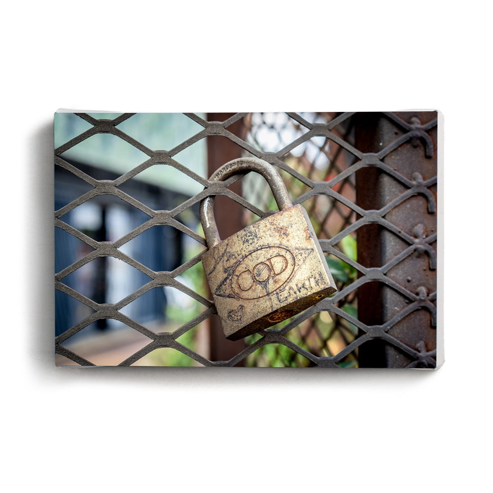 Canvas Print Locked | www.iiilovelocal.com