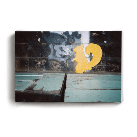 Canvas Print Budgie on Skateboard