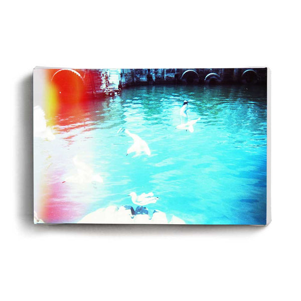 Canvas Print Blue Gulls | www.iiilovelocal.com