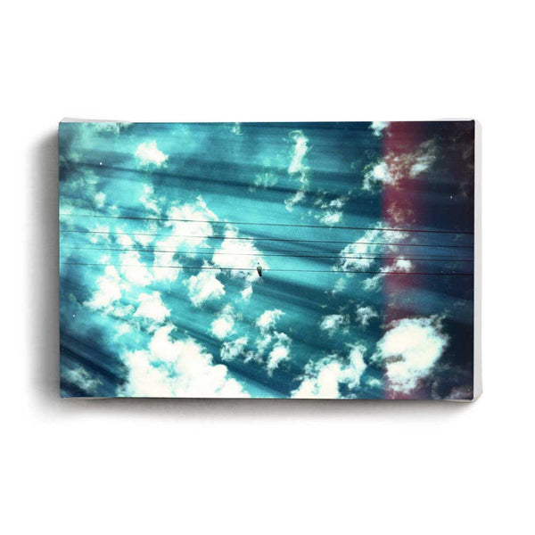 Canvas Print Pigeon and Clouds | www.iiilovelocal.com