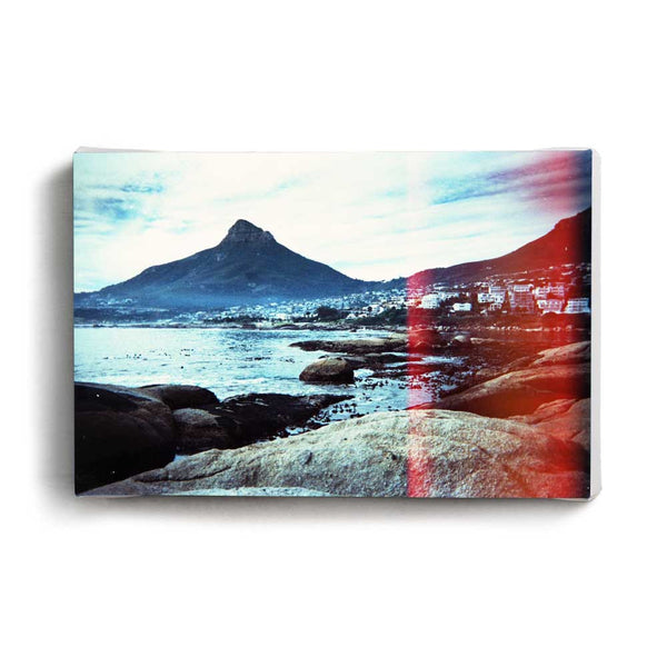 Canvas Print Lions Head | www.iiilovelocal.com