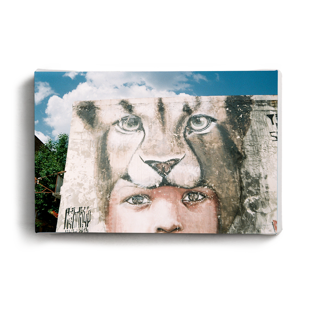 Canvas Print Lion Child | www.iiilovelocal.com