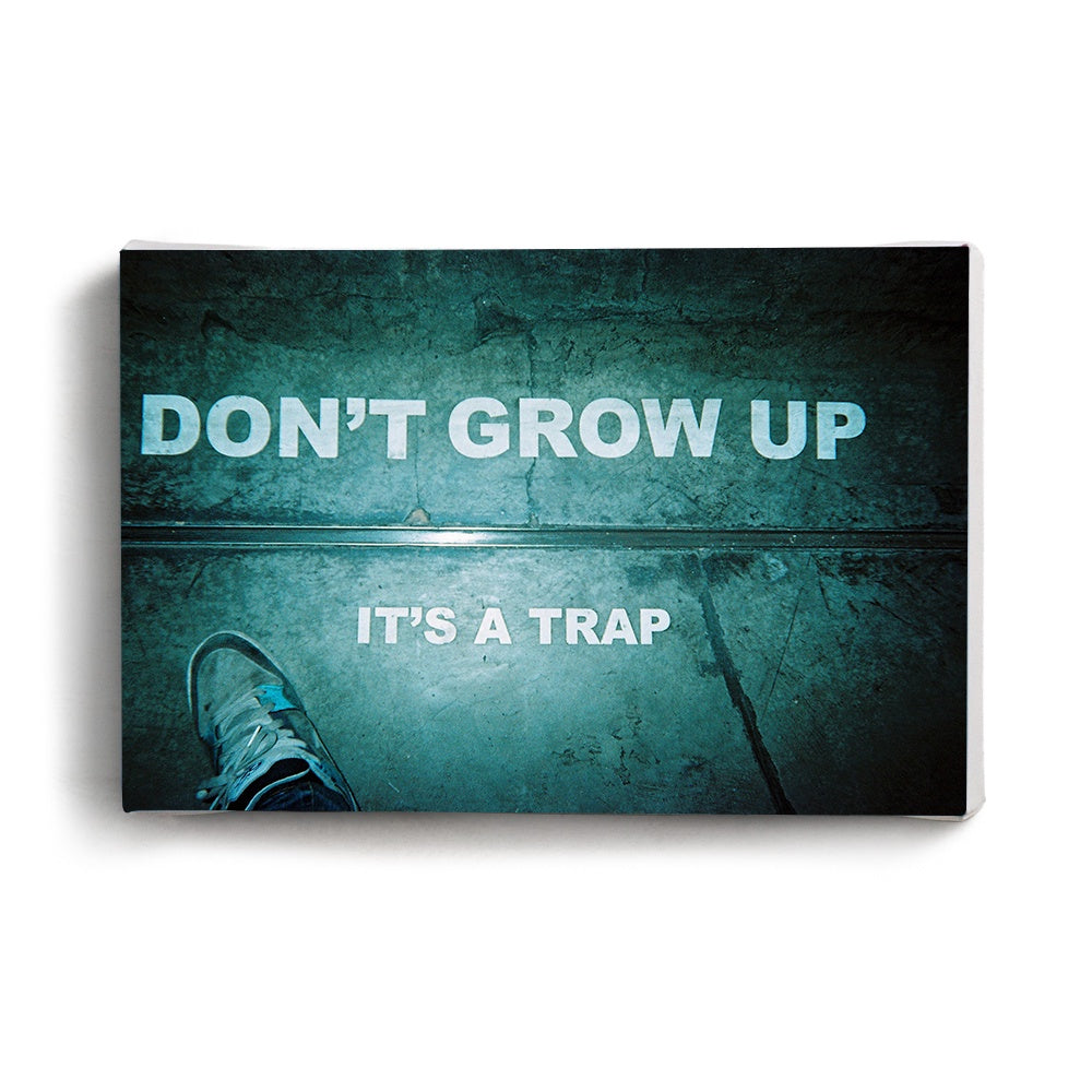 Canvas Print Dont Grow Up | www.iiilovelocal.com