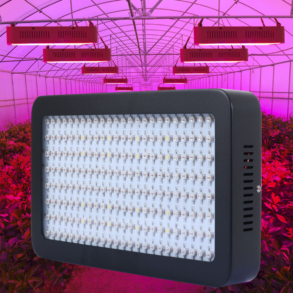 Fitolampa 1200W 200leds Full Spectrum Led Grow Light for Green House Grow Tent Hydroponics System Flowering Plant Black Shell