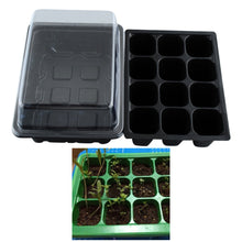 5 SET Seed Trays Plant Germination Kit Grow Starting Durable Plastic with Humidity Dome and Base 60 Cells All, Koram Plant Tags