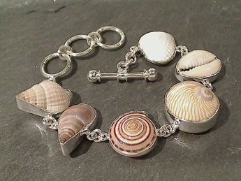 "6.5""-7.75"" Sea Shells, Fine Sterling Bracelet"