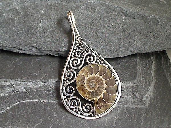 Ammonite Fossil, Sterling Silver Large Pendant