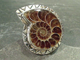 Size 9 Fossil Ammonite, Sterling Silver Large Stone Ring