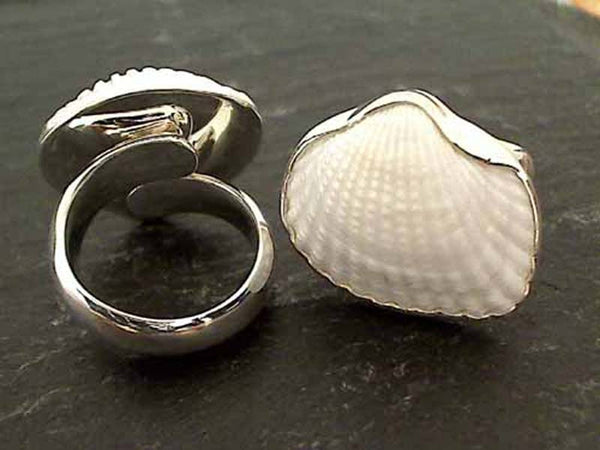 Ark Shell, Fine Sterling Ring - Adjustable