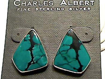 TURQUOISE FREEFORM CLIP ON EARRINGS