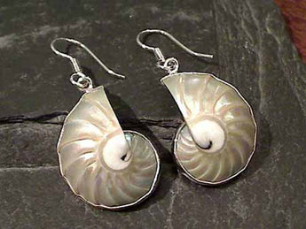 Nautilus Shell, .950 Fine Sterling Earrings