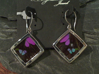 Butterfly Wings, Sterling Silver Earrings