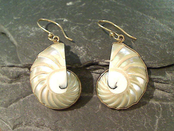 Nautilus Shell, Alchemia Earrings