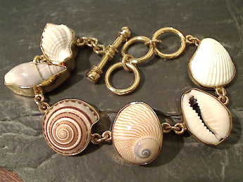 "6.75""-8"" Sea Shell, Alchemia Bracelet"