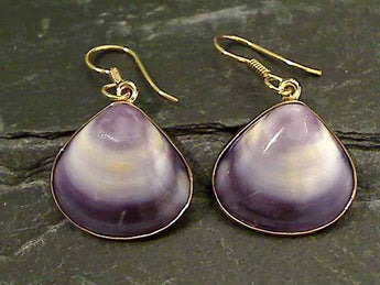 Sea Shell, Alchemia Earrings