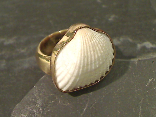Ark Shell, Alchemia Adjustable Ring